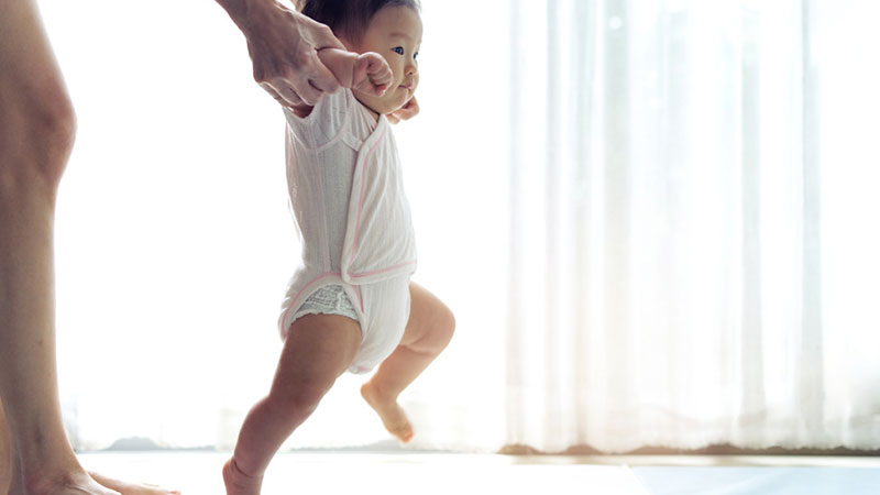 Began-develop-first-step